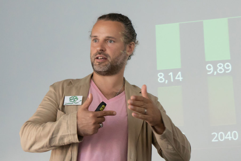 Armando-Sommer-Strategie